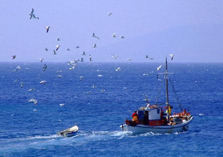 Ψαρεύοντας Έρχεται η Θάλασσα
