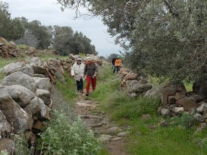 Τα Μονοπάτια Πολιτισμού της Αίγινας